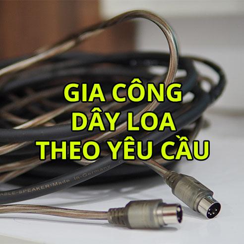 gia cong day loa thumbnail